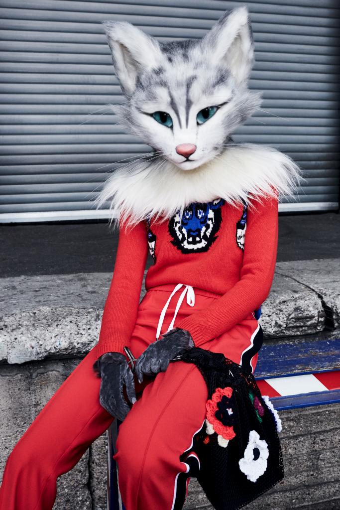 Auf dem Foto ist Katzenlady Pheline in einer roten Trainingshose von Kenzo und einem roten Strickpulli von Gucci zu sehen. In der Pfote hält sie einen Beutel aus Netzstoff von Christopher Kane.